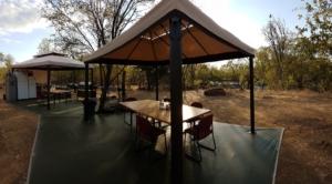 Water Buffalo Hunt Accommodations Australia